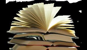 ReadersMagnet | Book Review img